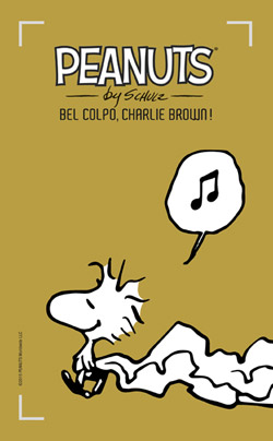 15 Bel colpo, Charlie Brown!