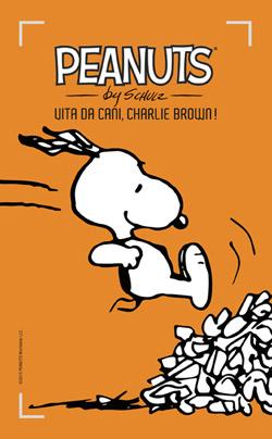 29 Vita da cani, Charlie Brown!